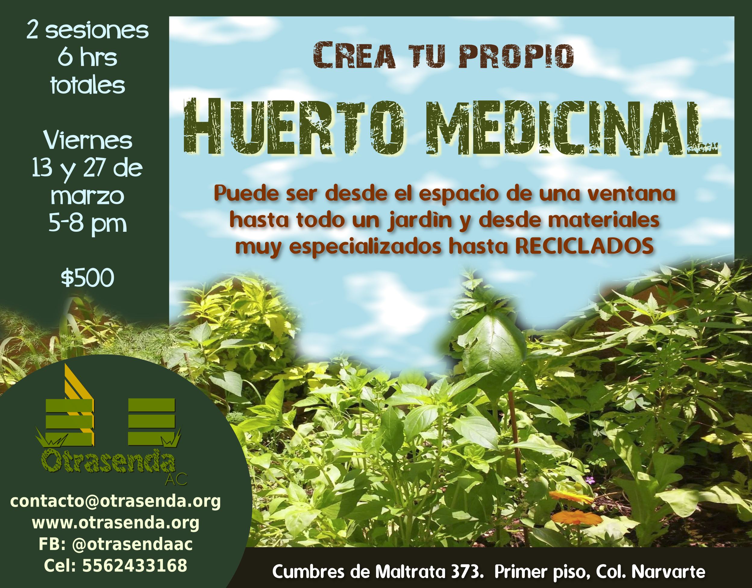 huertomedicinal1